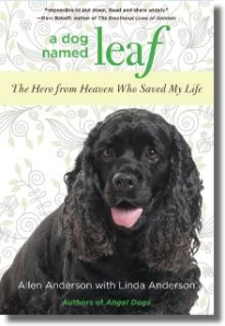 A Dog Named Leaf