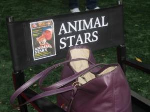 Animal Stars Director's Chair